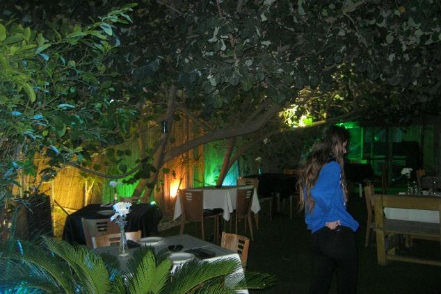 מסעדת באבא יאגה. צילום: תמר געש