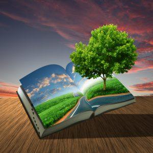 איכות הסביבה מגיעה לאקדמיה