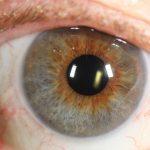 עיניים מעורבות בצבעים