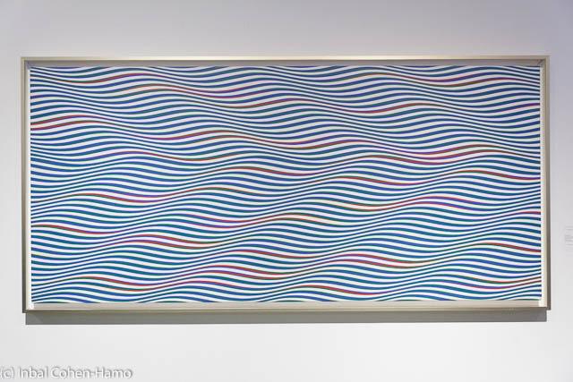 תחושה של גלים בעבודתה של ברידג'ט ריילי