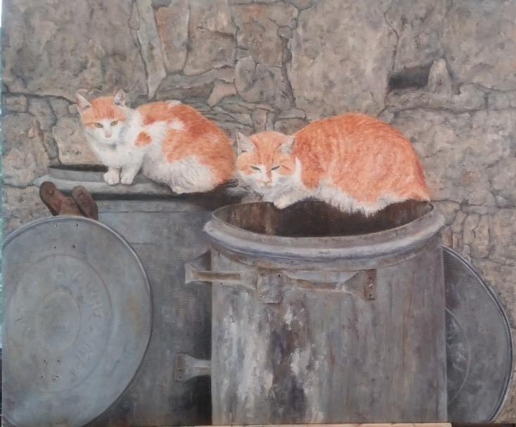 2חתולים בזבל_אינטרנט