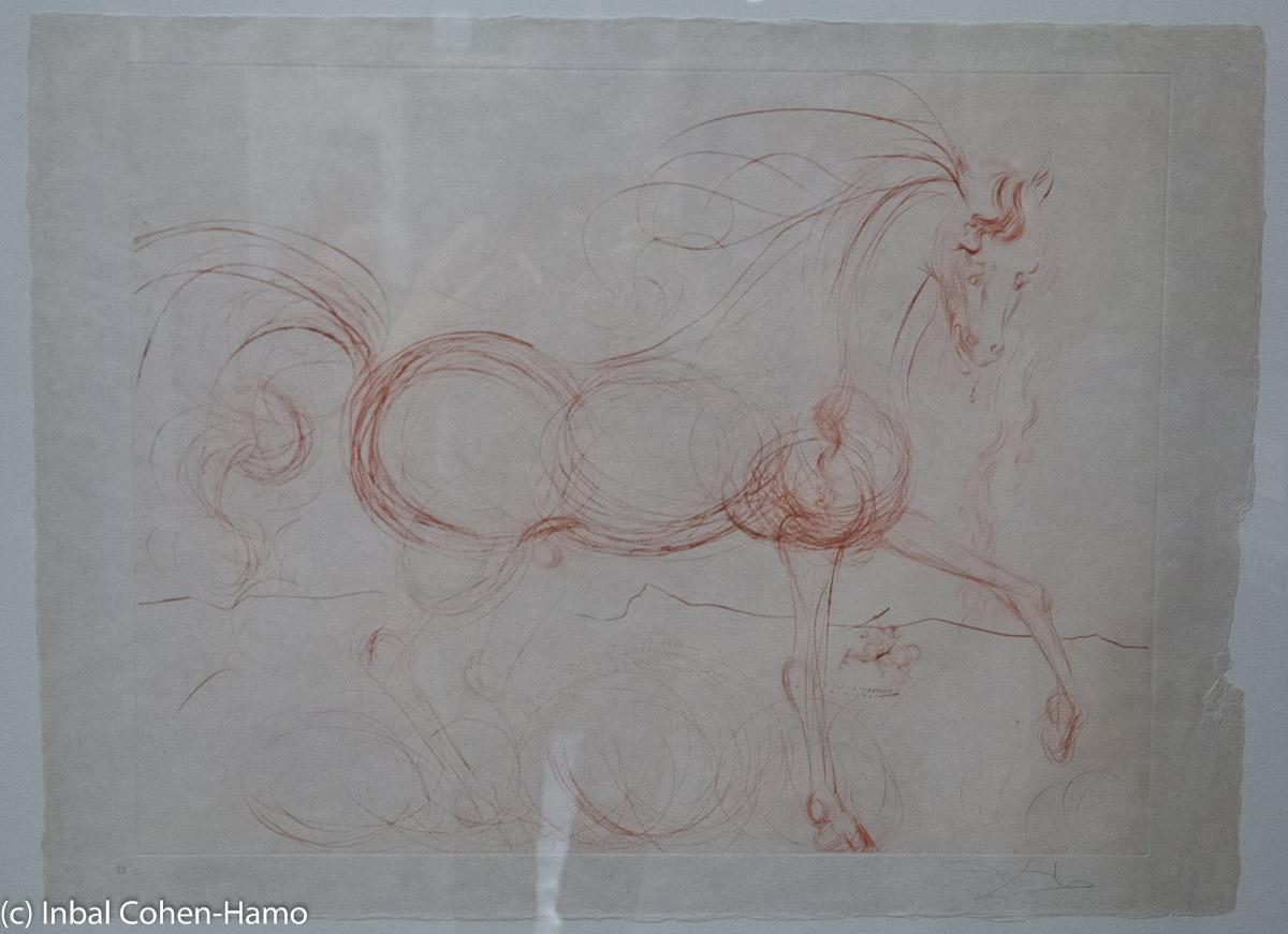 דאלי, סוסים.