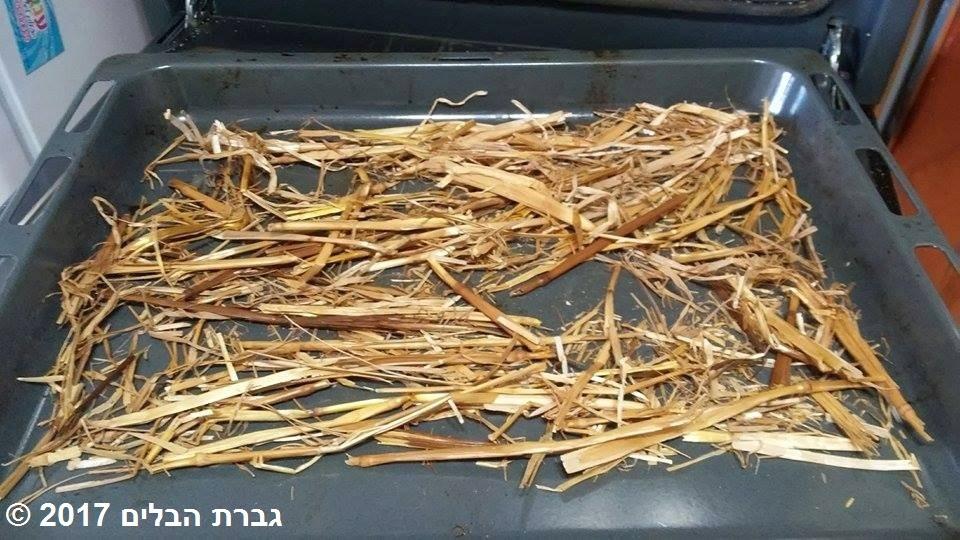 roasted hay