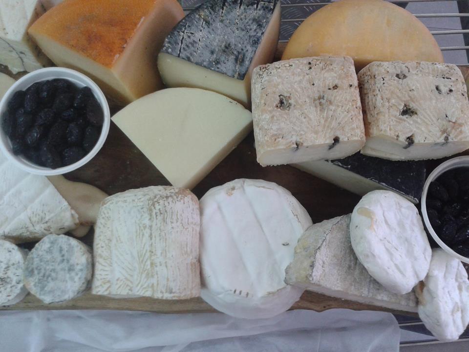 עדי קאופמן מסיבת קוקטייל פלטת גבינות