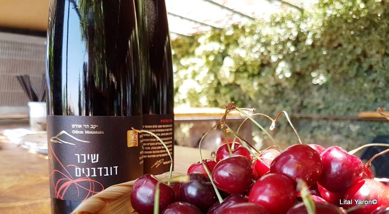 wine1234