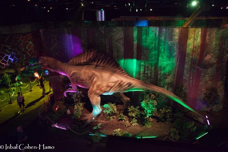 מבט מהמרפסת אל הדינוזאורים הענקיים
