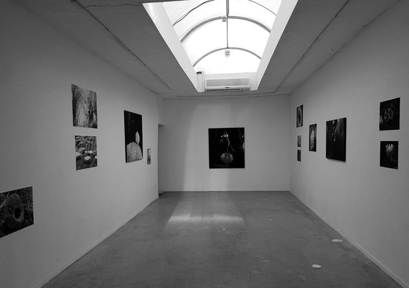 """מראה התערוכה """"אבני המקום"""", צילום חזי פנט"""
