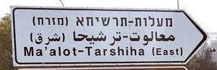 TARSIHA 11