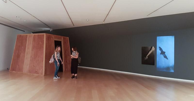מבט אל התערוכה של רונית פורת - דימוי מודפס, מוקרן ומבנה שבו הקרנה מסתובבת. צילום: ענבל כהן חמו