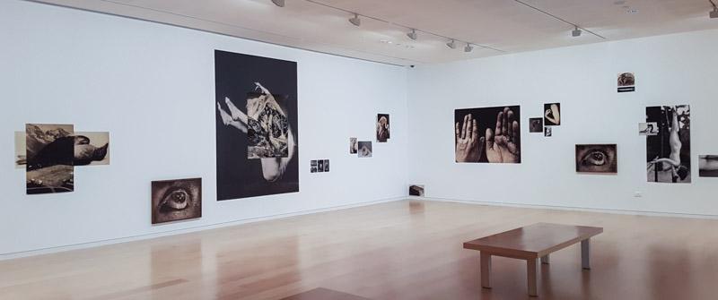 מבט אל התערוכה של רונית פורת. צילום: ענבל כהן חמו