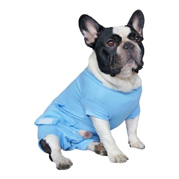בגד גוף לכלב/חתול לאחר ניתוח צילום: יצרן