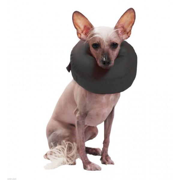 קולר מגן לכלב לאחר ניתוח צילום: יצרן