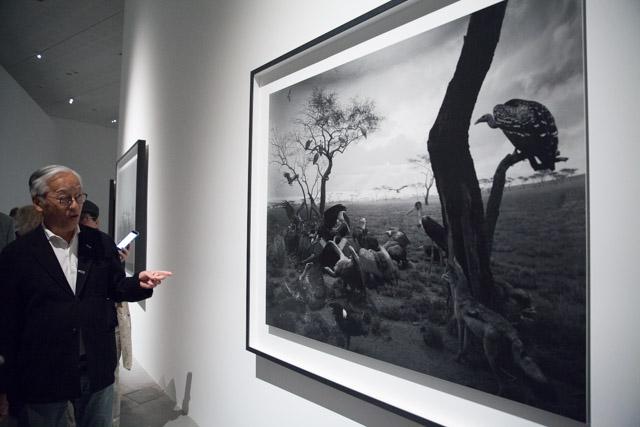 הירושי סוגימוטו השבוע במוזיאון תל אביב ליד אחד מצילומי הדיורמות