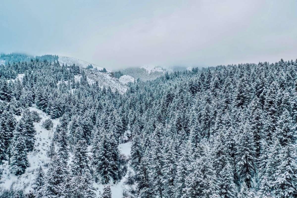 נוף קר, קשוח, ריק. צילום: mitchell kmetz