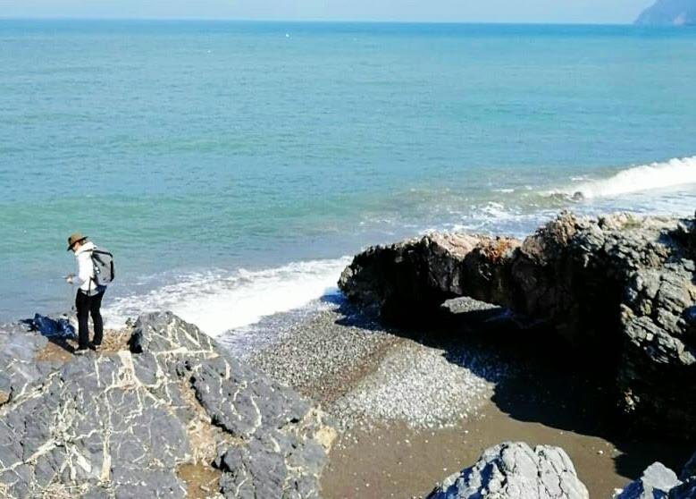 הולכת על הקצה ובודקת גבולות. חוף קריה ווריסי, יוון