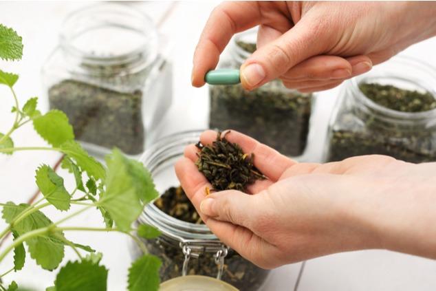 צמחי מרפא יכולים לעזור לכם לעבור את התקופה הקשה (צילום: שאטרסטוק / Robert Przybysz)
