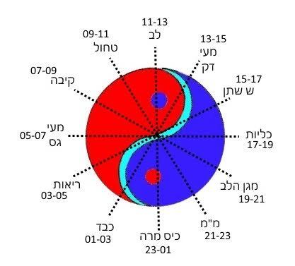 שעון הצ׳י- רונן רוזנבלט-ניר - דיקור סיני בתל אביב