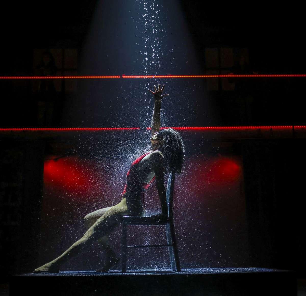 פלאשדאנס המחזמר  צילום: אור דנון