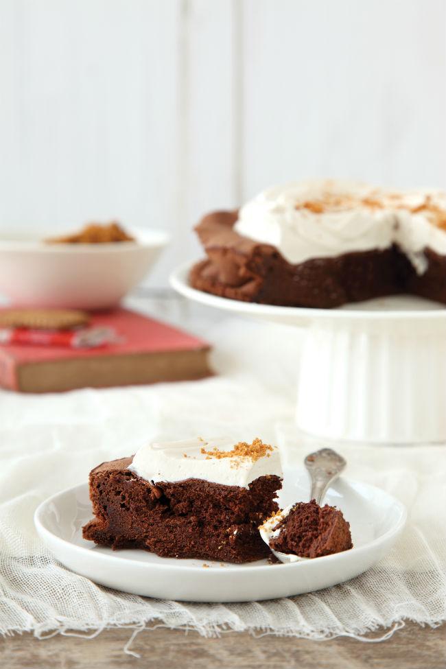 עוגת שוקולד ולוטוס (צילום: דניה ווינר)