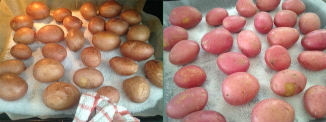 תפוחי אדמה במלח גס (צילום: מיה מיטב)