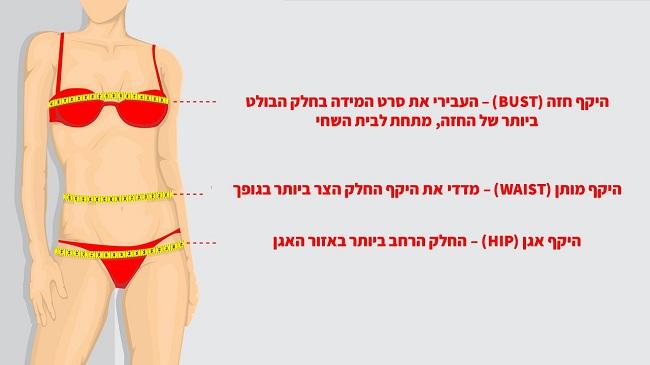 מדידת גוף