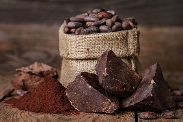 פולי קקאו, אבקת קקאו ושוקולד –תמונה משפחתית (צילום: שאטרסטוק)