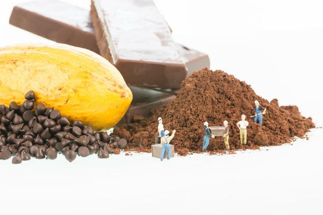 אם כבר היסטוריה, אז הכי טוב שוקולד (צילום: שאטרסטוק)