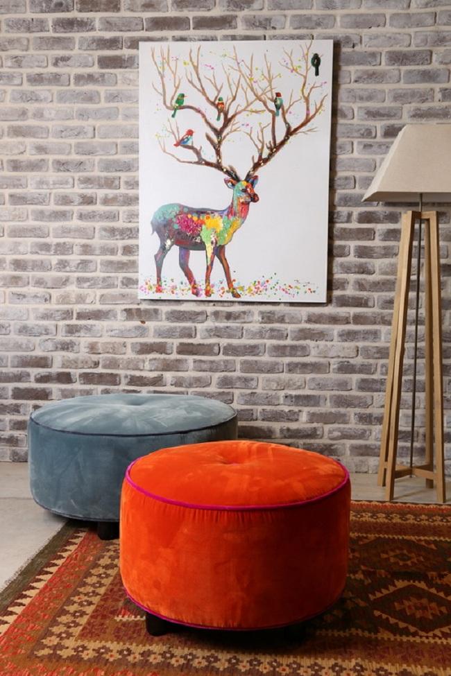חיות בסלון הביתי: מעלות חיוך, מרחיבות את הלב ומוסיפות עניין וצבע. עיצוב: ביתילי