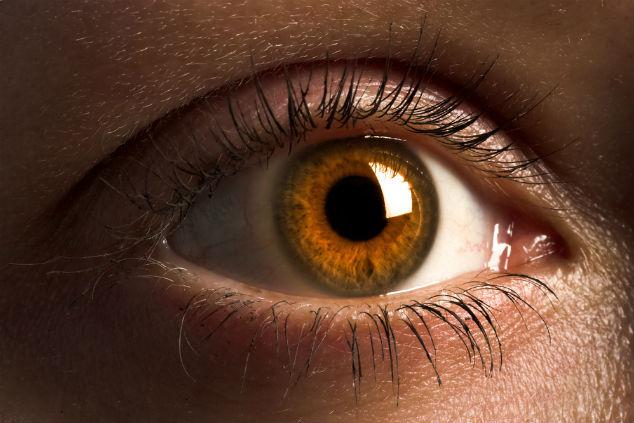 השפעת השעות הארוכות מול מסכים לא פוסחת על העין שלנו (צילום: שאטרסטוק)