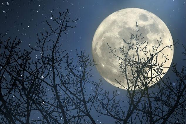 ירח מלא צילום:  Zacarias Pereira da Mata שאטרסטוק