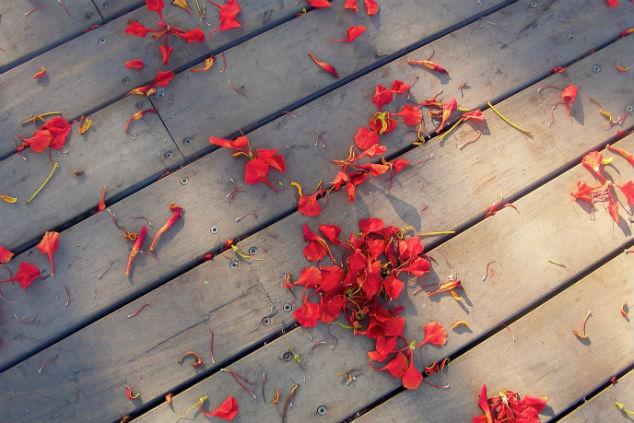 פרחים על רצפה דורית קדוסי