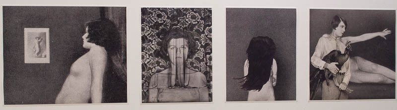 דימויים שיצרה רונית פורת בשילוב צילומיו של השען אולבריך