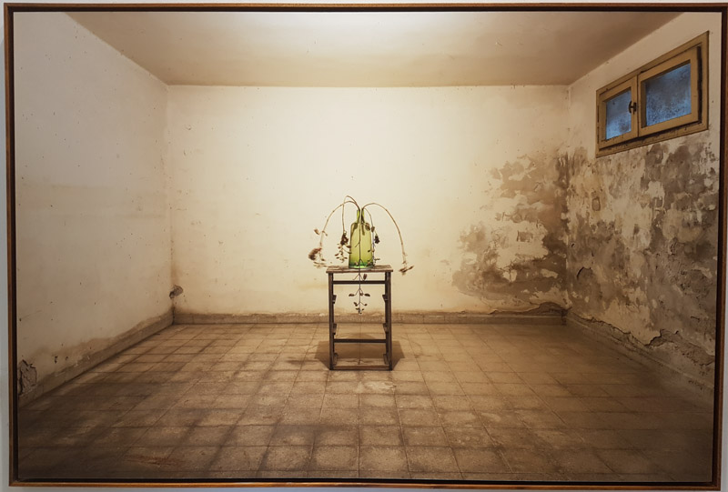 """פסי גירש, """"ללא כותרת"""", 2017"""