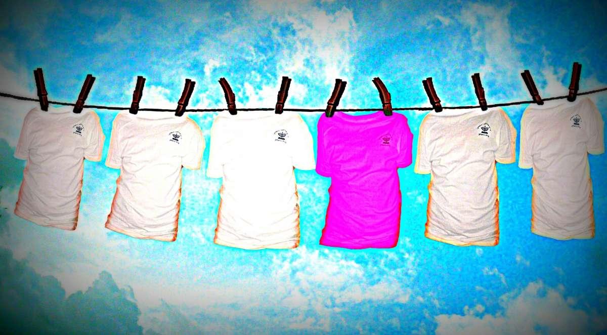 laundry (Large)