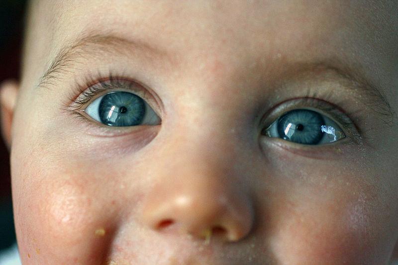 800px-Smiling_Eyes