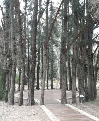 Ilanot_botanic_gardens_visitors_center