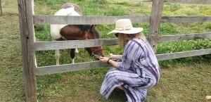 סוסה ידידותית והרה - אלבום פרטי