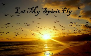 Freedom-let-my-spirit-fly