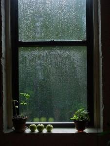גשם 4