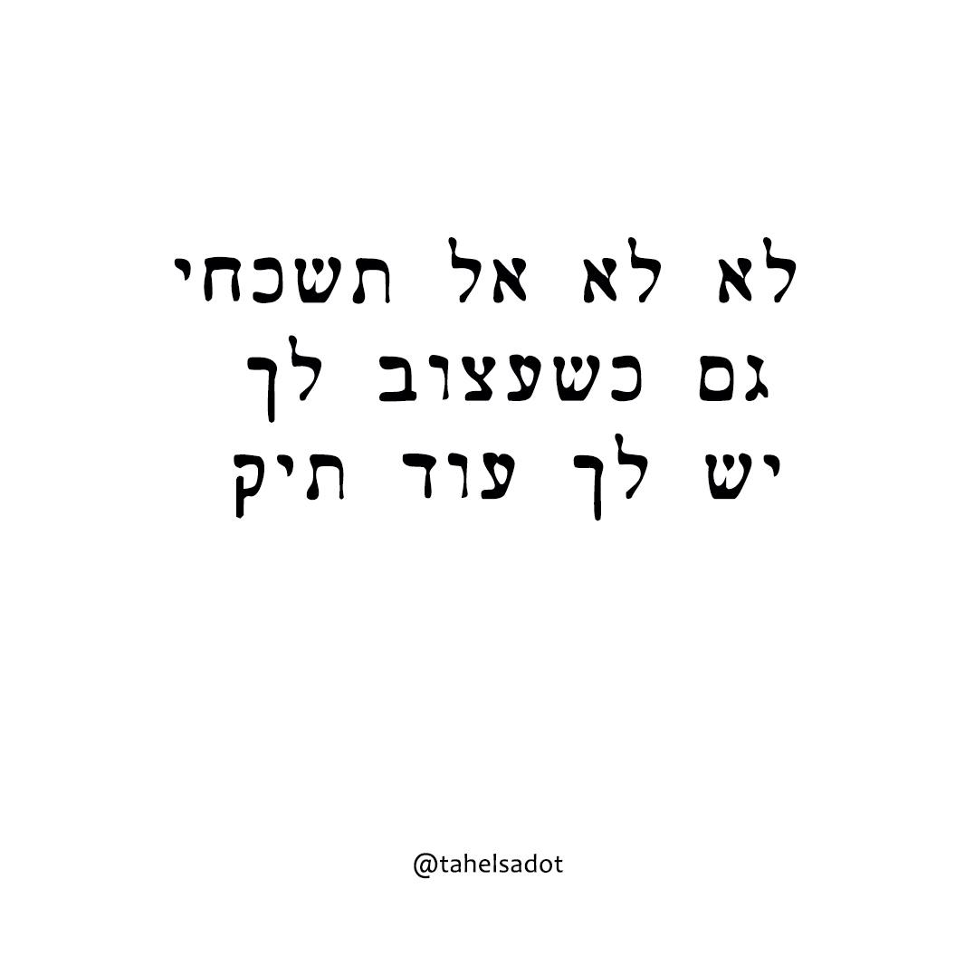 תהל שדות